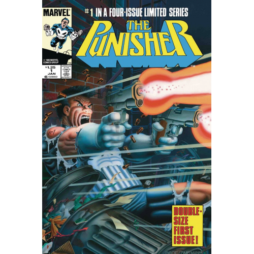 PUNISHER BY GRANT & ZECK 1(VO)