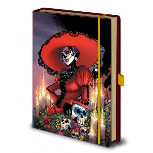NOTEBOOK - CARNET LADY MECHANIKA 003