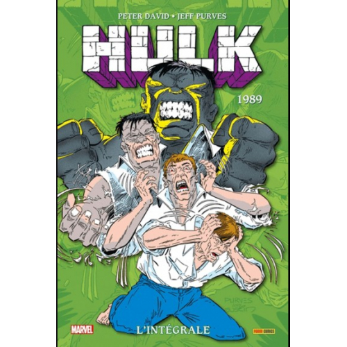 Hulk : L'intégrale 1989 (Nouvelle édition) (VF)