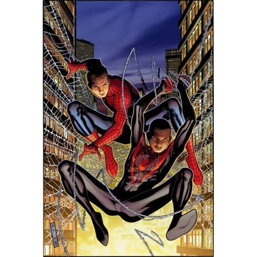 Spider-Men (VF)