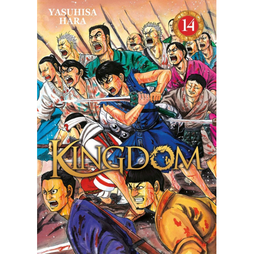 Kingdom Tome 14 (VF)